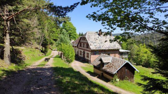 La maison forestière du Spitzberg